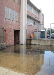 Water Collects on the North Side of Hine's East Building