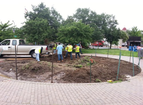 City Contractors Remove Rat Friendly Habitats on Metro Plaza - June 12, 2014