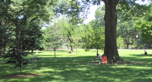 Lincoln Park, Sunday Afternoon, circa 2:30pm, July 6, 2014