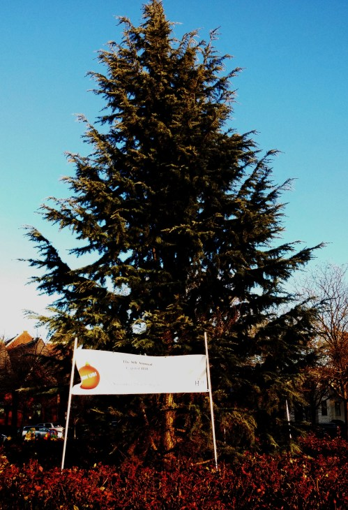 """Big George"" Eastern Market Metro Plaza's Holiday Tree Will Light Up Next Saturday"
