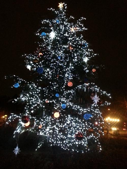 Holiday Tree and Menorah, Eastern Market Metro Plaza, 2014