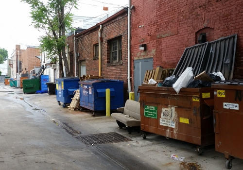 Alley scene, west side of 600 block of 8th Street, SE, circa 8:30am Sunday, May 17