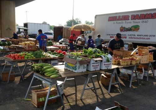 Vendors at RFk Farmers Market