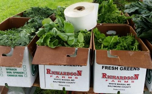 Local Greens - Collard, Kale and Mustard