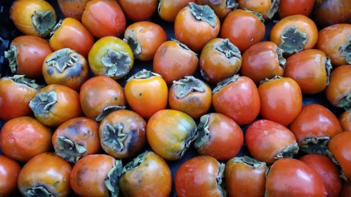 Persimmons.  Saturday, October 8, circa 9:00am at Agora Farms stall, Eastern Market