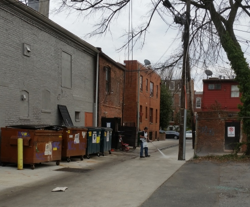 The attention caused nearby restaurants to take a look - at least temporarily - at their own parts of the alley.